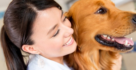 Ce trebuie să faci înainte de intervenţia chirugicala a animalului tău de companie?